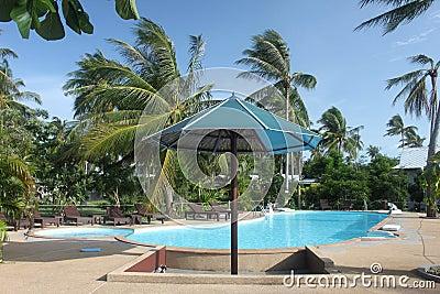 Un parasol avec la piscine avec les pamls clairs de l 39 eau for Piscine l ile bleue seynod horaires