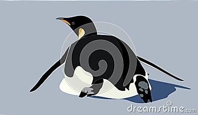 Un pingüino de emperador que resbala en su vientre