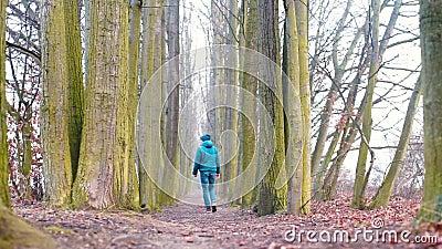 Un viajero camina por una carretera en el bosque cercano son árboles altos metrajes