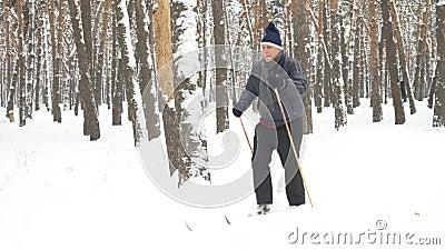 Un vieil homme en ski de fond dans la forêt entre pins clips vidéos