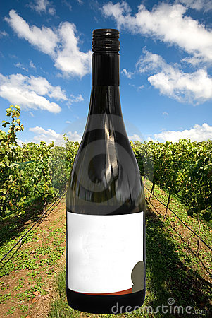 Una botella de vino con una escena del viñedo
