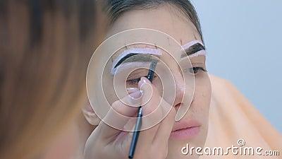 Una donna che tinge sopracciglia che applica pennello di colore marrone, chiusure del viso archivi video