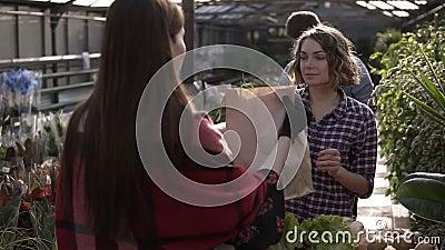 Una giovane ragazza che acquista cibo biologico in serra, riceve la spesa in sacchetto di carta e la paga. Dietro di lei archivi video