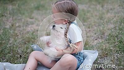 Una graziosa bambina si siede sull'erba e tiene in braccio un cucciolo bianco in estate stock footage