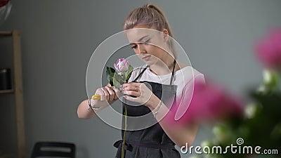 Una joven florista vestida de delantal preparando flores frescas para el ramo metrajes