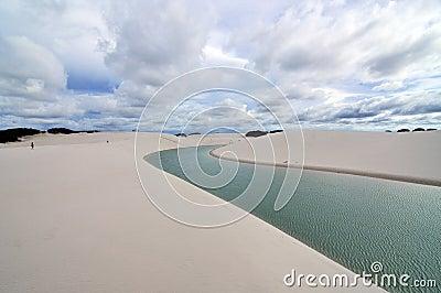 Uncommon Desert