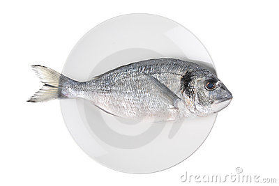 Uncooked fish (sparus auratus)on a plate