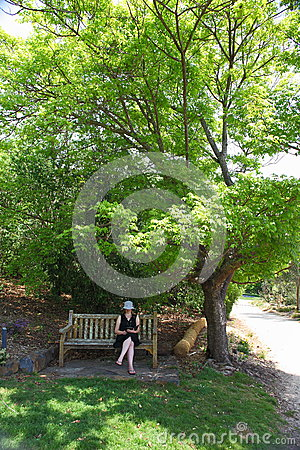 Woman under shady tree in park