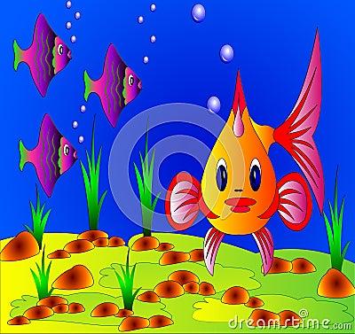 The Undersea life