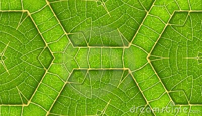 Underside Of Green Leaf Seamless Tile Background