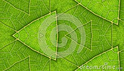Underside Of Green Leaf Seamless Tile Background