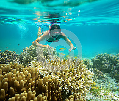 Underwater adventure of a girl in the tropical sea