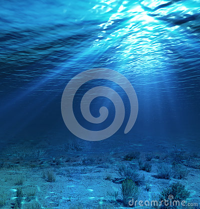 Free Underwater Landscape And Backdrop With Algae Royalty Free Stock Photo - 38313495