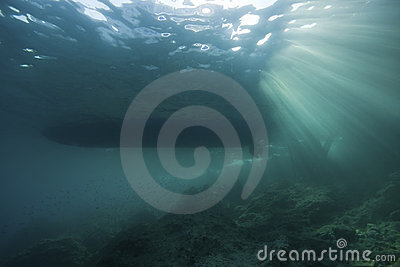 Underwater landscape with sun rays