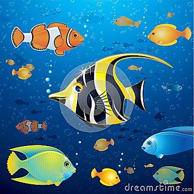 Underwater Life Vector
