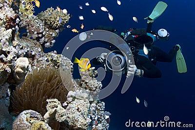 Underwater Photographer Editorial Photography