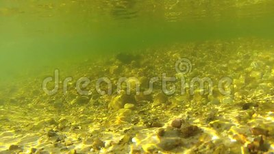 Underwater video of freshwater stream. This is an underwater video of a freshwater stream. The water is fairly clear and has a greenish tint to it. This was stock video