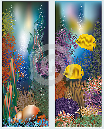Underwater world banners with seashell