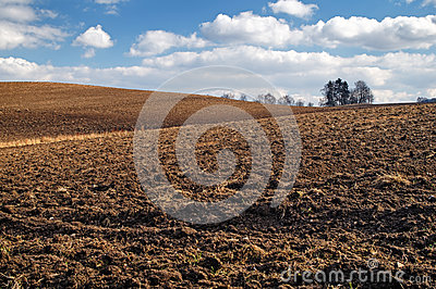 Undulating plowed field in early spring