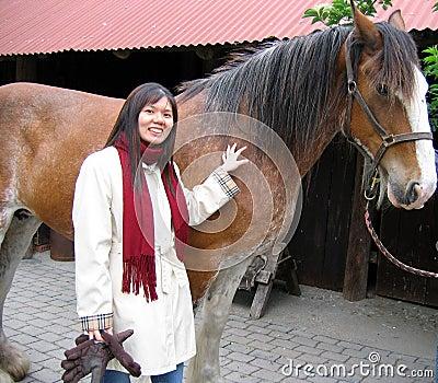Une fille ou une femme avec un cheval