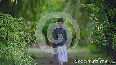 Une jeune femme brune mince en pull et en jupe blanche longue va au loin le long d'une belle allée picturale verte banque de vidéos