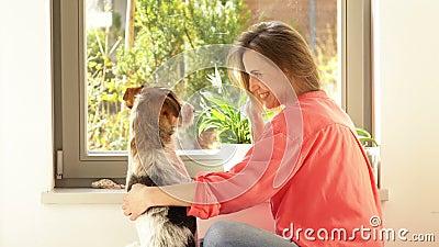 Une jeune femme joue par la fenêtre avec son chien Un animal de compagnie demande à être traité banque de vidéos