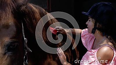 Une jeune fille dans un casque de monte peigne une crinière de cheval avec une brosse spéciale Soin pour des animaux 4K vid?o 4K banque de vidéos