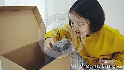 Une jolie fille asiatique jouant à cache-cache et cherchant avec une race chatte Scottish Fold dans la boîte à papier banque de vidéos