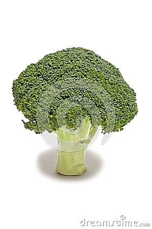 Une tige saine de brocoli frais