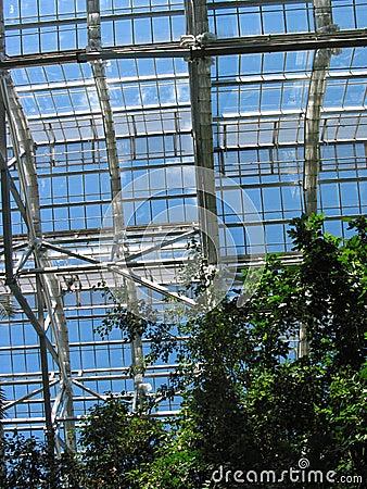 Une vue de Greenhouseâs de l â 1 de ciel