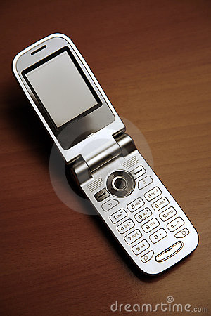 Unfolded mobile phone