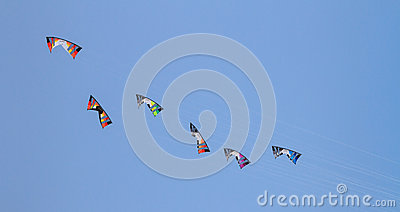 Unidentified men are releasing kite Editorial Stock Image