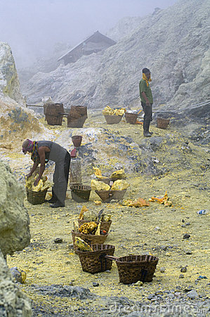 Unidentified miner harvests raw sulphur Editorial Image