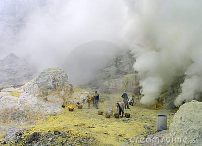 Unidentified miners harvests raw sulphur from the Editorial Image