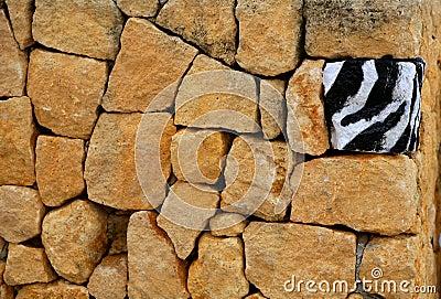 Unique, alone, one zebra texture painted stone
