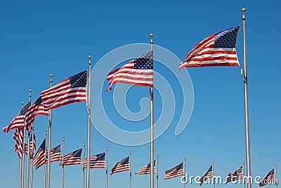 United States Flags around Washington monument, W