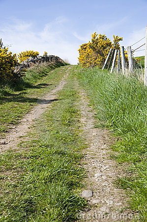 Uphill track in countryside