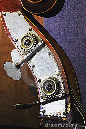 Upright Bass Head Close Up