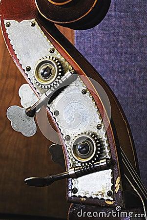 Upright Bass Head Close Up