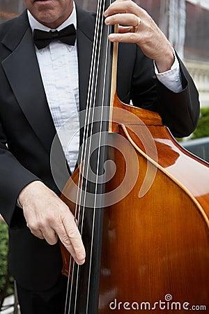 Upright bass musician