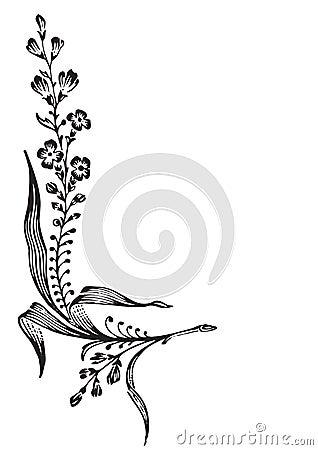 παλαιό διάνυσμα λουλο&upsil