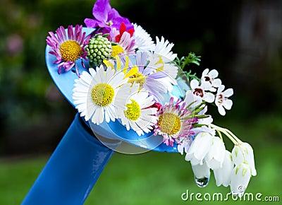 μπορέστε πότισμα λουλο&upsilo
