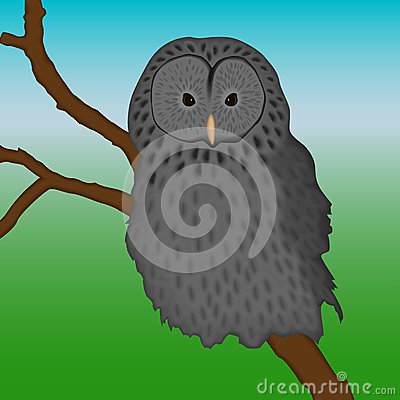Ural owl sitting on a branch