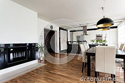 Urban apartment - white and black interior