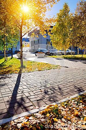 Urban autumn landscape