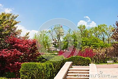 Urban public garden