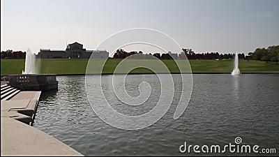 Uroczysty basenowy lasu park zdjęcie wideo