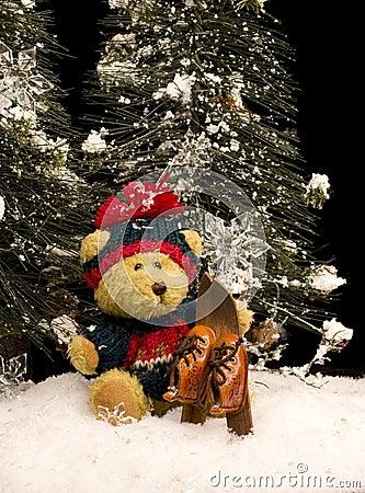 Urso da peluche com esquis