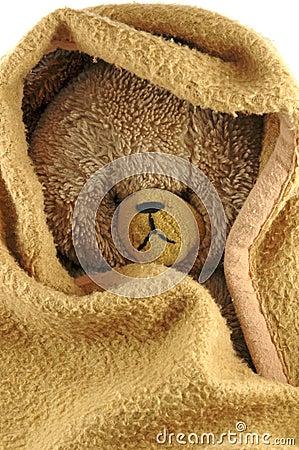 Urso e cobertor