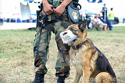 US Army Soldier and Guard Dog